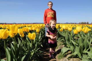 Kids in the tulip field - Roozengaarde